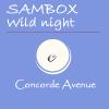 Concorde Avenue (digital store) - Page 2 Wild%20night